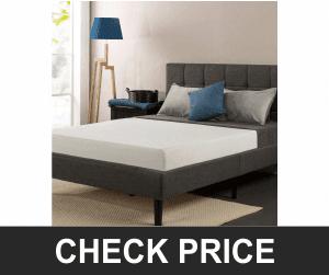 Sleep Master Total Therapeutic Comfort Premium Memory Foam Mattress
