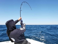 BEST SALTWATER FISHING ROD AND REEL COMBO